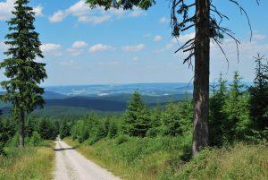 Ferienwohnungen im Verlegerhaus Seiffen - Aktivurlaub im Erzgebirge